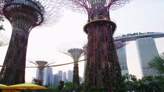 Gardens by the Bay Light Show Stock Footage