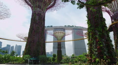 Skyway at the Super Tree Groves with the Marina Bay Sands at the Background Stock Footage