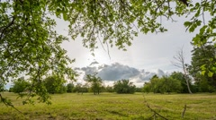 Summer Field timelapse footage. Nature landscape. - stock footage