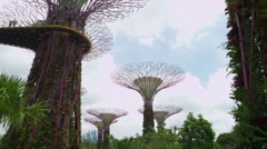 Gardens by the Bay, a Nature Park - stock footage