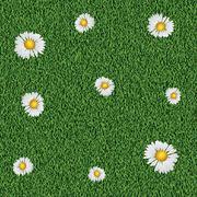 Daisy on grass Stock Illustration