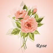 Beautiful bouquet of roses isolated on white - stock illustration