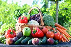 Variety of fresh organic vegetables and fruits in the garden. Balanced diet Stock Photos