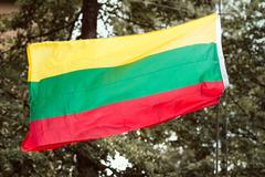 Lithuanian flag waving on trees background - stock photo