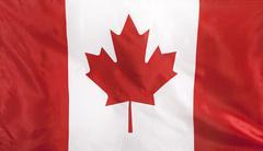 Canada Flag real fabric Stock Photos