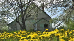 Old House and Spring Flowering Garden Stock Footage