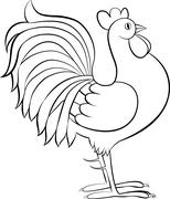 drawing of rooster or cock vector sketch - stock illustration