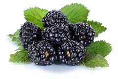 Blackberry fruit blackberries berry berries fruits isolated on white Stock Photos