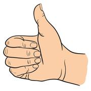 Hand with Thumb Finger Up, Victory and O.K. Symbol Hands. Vector Illustration - stock illustration