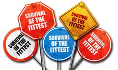 Survival of the fittest, 3D rendering, rough street sign collect Stock Illustration
