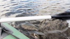 To pull the oars in the water Stock Footage