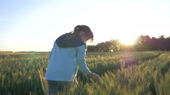 Girl in a wheat field at sunset collects wheat, slow motion - stock footage