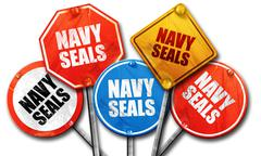 Navy seals, 3D rendering, rough street sign collection Piirros