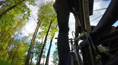 Cyclist riding on a sunny summer forest, view from the bottom up Stock Footage