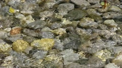 the water in the river bed - stock footage