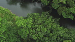 AERIAL: Flying above dense overgrown rainforest and over a quiet jungle river Stock Footage