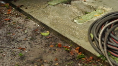 Garden Hose Coiled Up on a Sidewalk Stock Footage