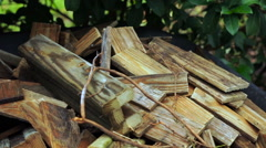 Gathering Firewood From Wood Pile Stock Footage