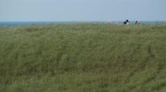 Adriatic coast of Molise Stock Footage