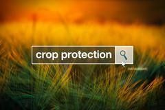 Crop protection in internet browser search box Stock Photos