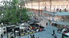 Atocha Station Botanical Garden, Madrid, Spain Stock Footage