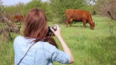 Beautiful young woman taking photos of cow with old film camera. Slow motion Stock Footage