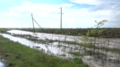 Rain water flows along vineyard Stock Footage