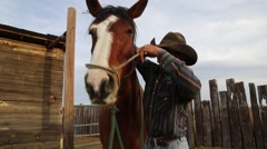 Cowboy putting a harness on a horse - stock footage