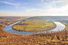 River Neckar - loop in Hessigheim - panorama Kuvituskuvat