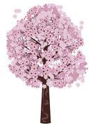Blooming Sakura Tree - stock illustration