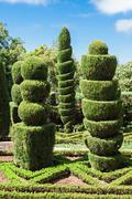 Botanical Gardens Madeira - stock photo
