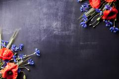 Red poppies with blue cornflowers and rye on old blackboard with scratches Stock Photos