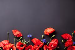 Heads of red poppies and cornflowers on black background flat lay - stock photo