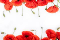Heads of red weeds on white background flat lay - stock photo