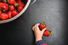 black desk background with copyspace the child picks strawberries - stock photo