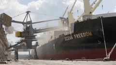 Crane in port loads grain on big ship and birds Stock Footage