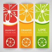 Three bright banner with stylized citrus fruit and splashes Stock Illustration