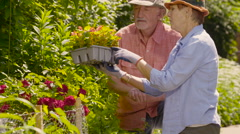 Senior couple with plants for their garden - stock footage