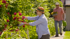 Senior couple preparing to plant flowers in the garden - stock footage