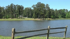 Senoia Georgia - small lake and great nature in Georgia Stock Footage