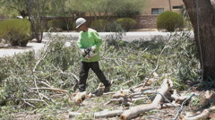 HD arborist ground crew clear branches and chop up medium shot - stock footage