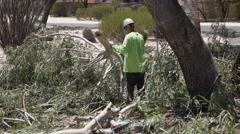4K UHD arborist ground crew chop up 2 Stock Footage