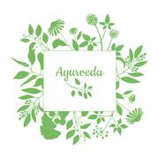 Fresh herbs store emblem. Green square frame with collection ayurveda plants. Stock Illustration