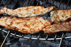 Chicken or turkey steak ready cooked on grill Stock Photos