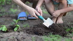 Woman and the child planting seedlings and watering them in backyard garden Stock Footage