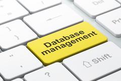 Database concept: Database Management on computer keyboard background - stock illustration