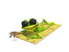 Frog with glasses on a towel Stock Illustration