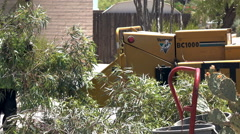 4K UHD man feeds wood chipper with cut off branches Stock Footage