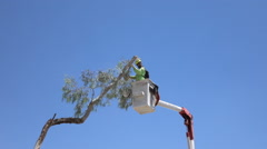 HD branch trim in bucket crane 3  - stock footage