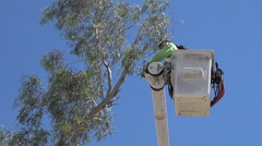 HD branch trim in bucket crane2 close up Stock Footage